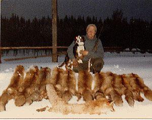 Hunt in Olofstrom