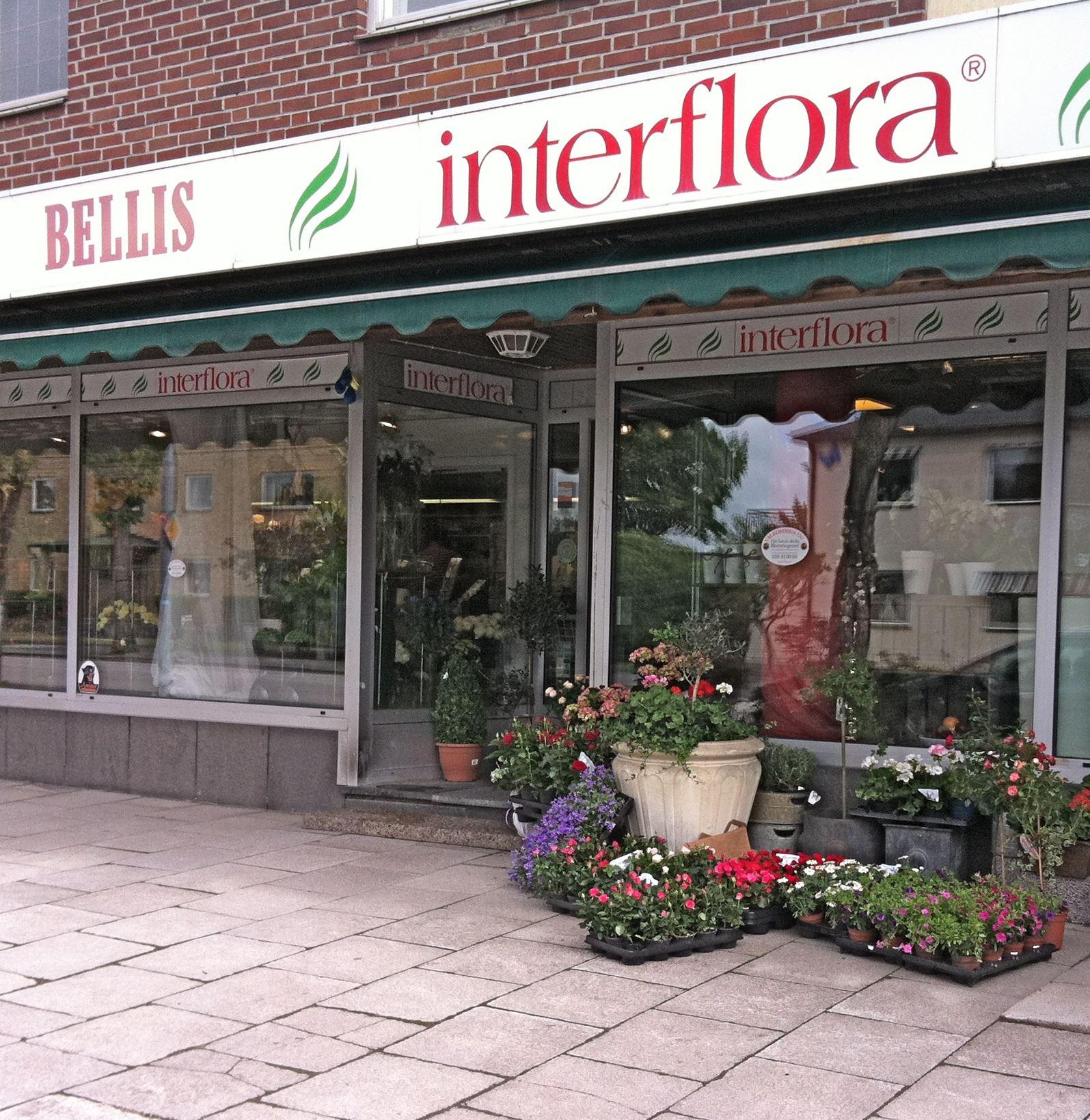 Bellis Blomsterhandel