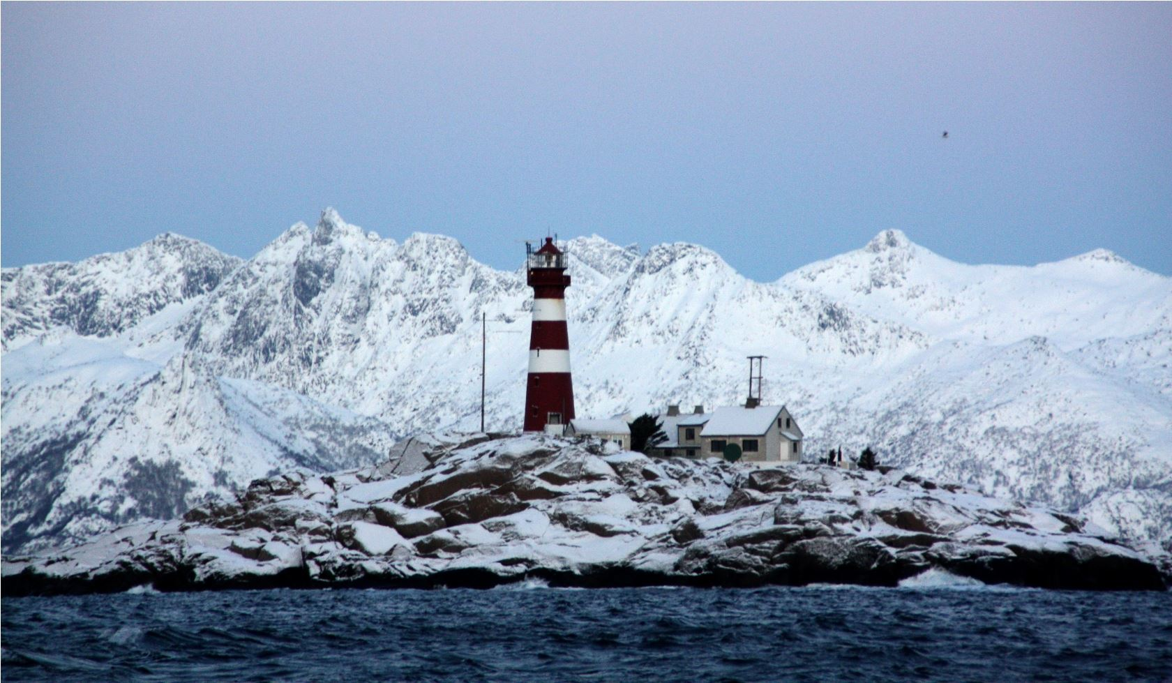Winter Lofoten Nature Safari