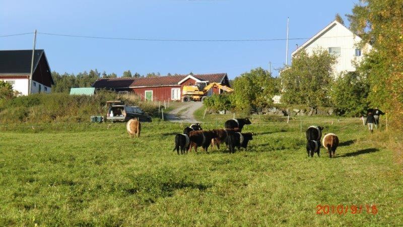 S5407 Country Resort Unterkunft, Vänna Bauernhof
