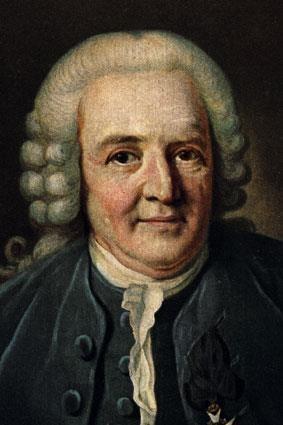 © Älmhults kommuns bildbank, Carl von Linné, Linnés Råshult