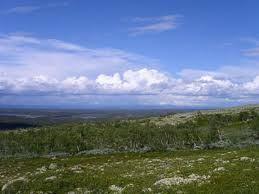 © lansstyrelsen.se, Gummas Naturreserve