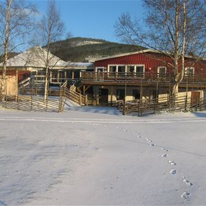 Träporten Camping/Bed & Breakfast