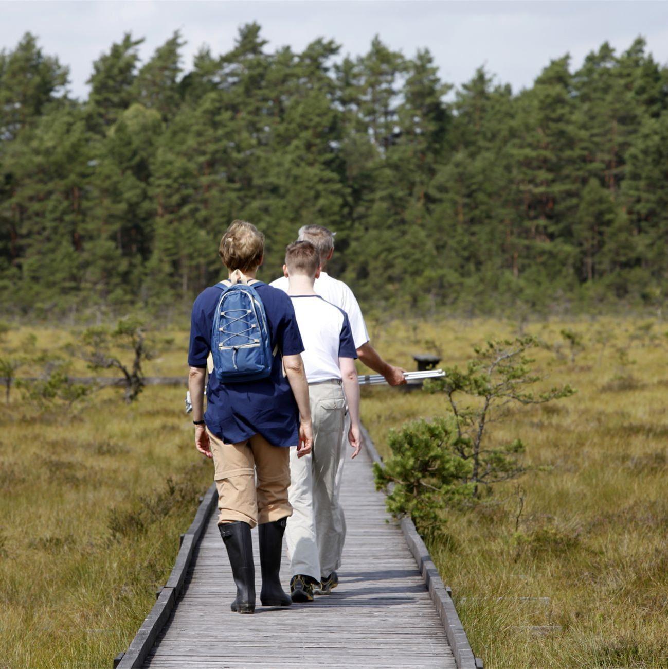 Foto: Smålandsbilder.se,  © Smålandsbilder.se, Vandring i Store Mosse nationalpark
