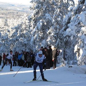 Ski Trail Pass - Cross Country