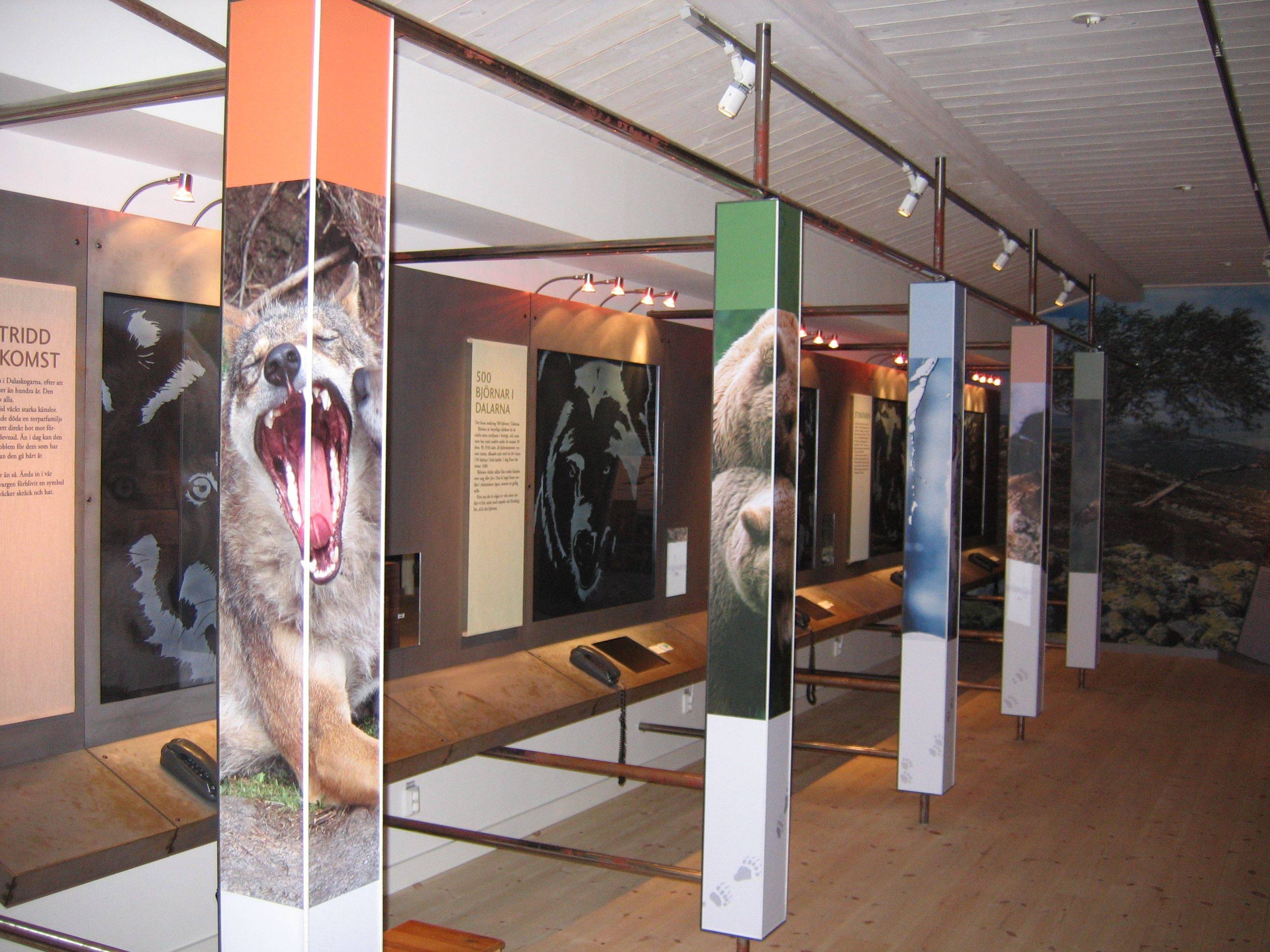 © naturum Dalarna, Rovdjursrummet på naturum Dalarna