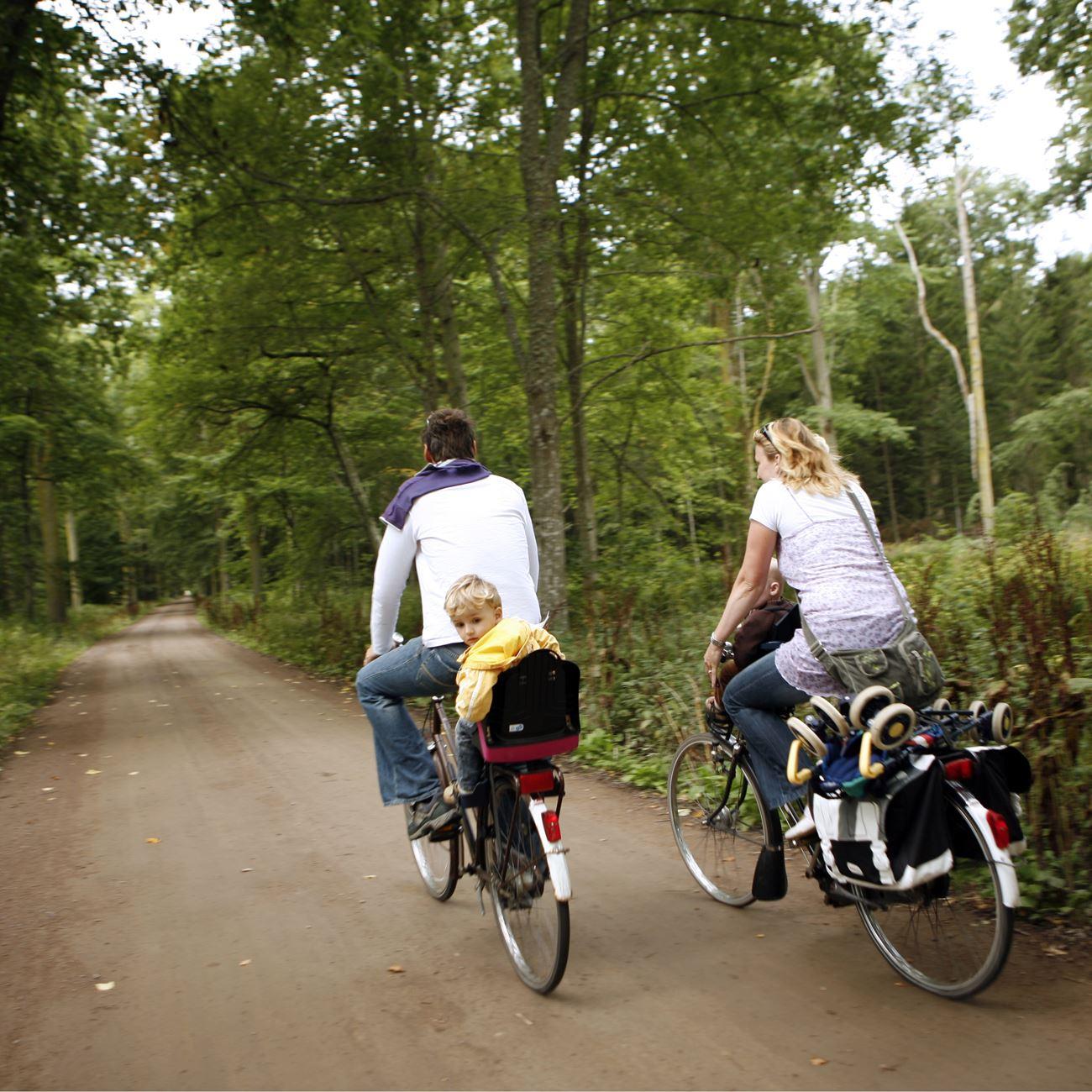 Foto: Smålandsbilder.se,  © Värnamo Näringsliv AB , Cykla