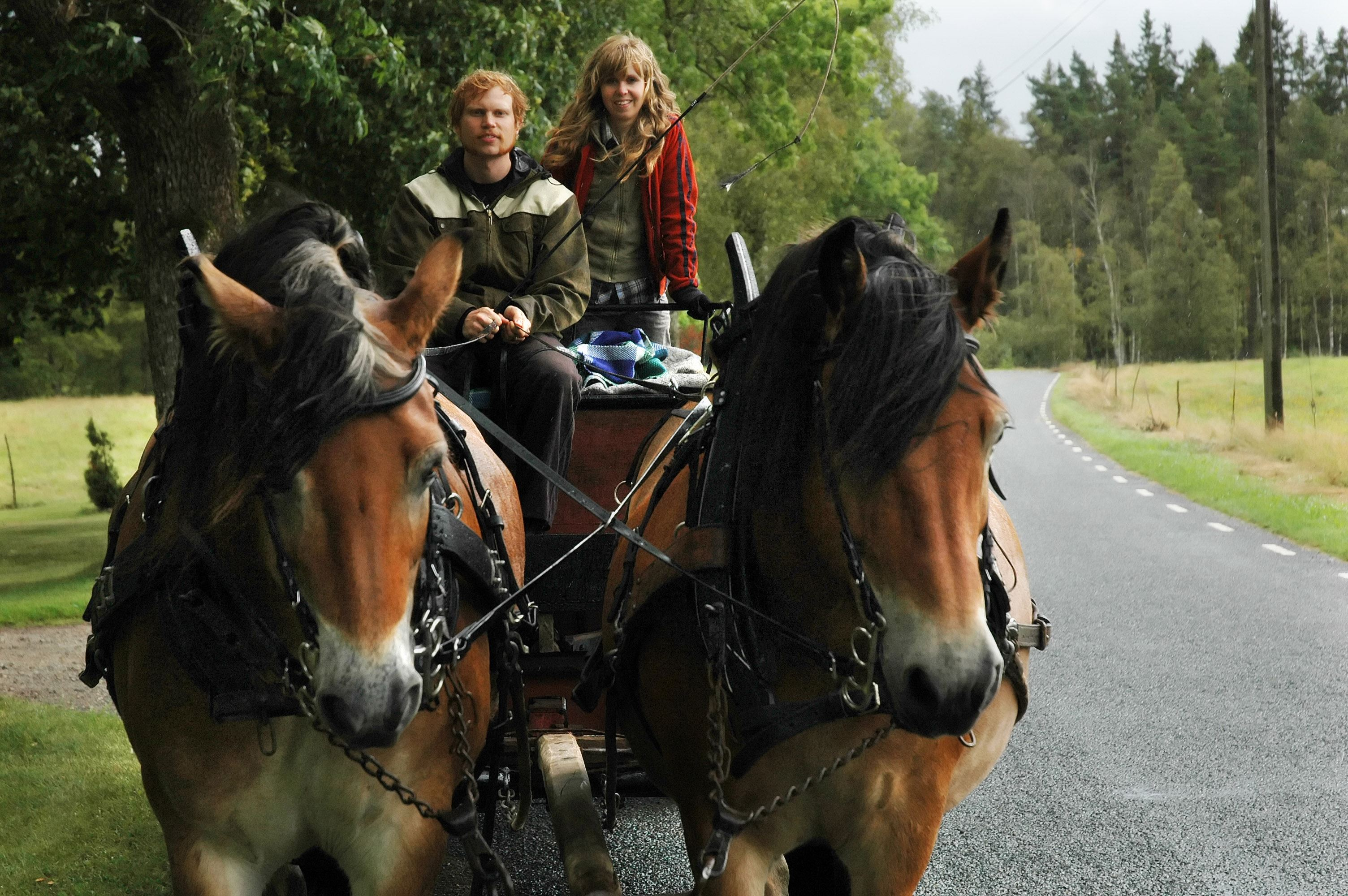 Häst & Vagn hos Fyrfota Hästkraft