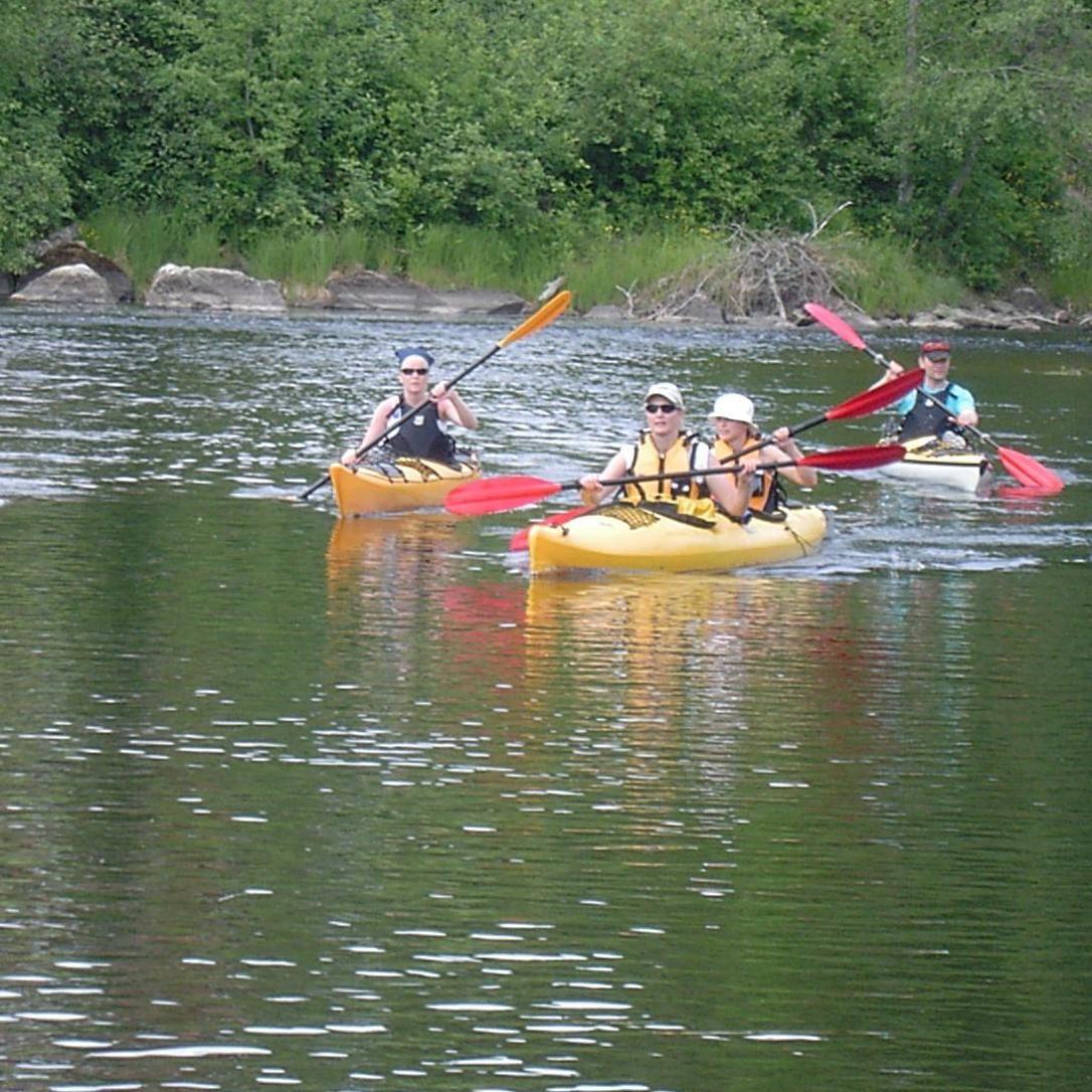 Paddla kanot i Borlänge
