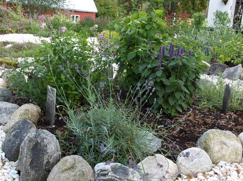 The herb garden at Tofte