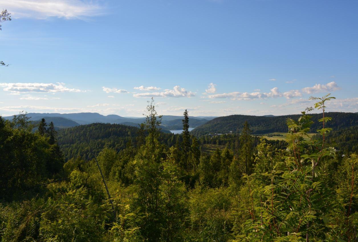 Foto: Åsa Mattsson,  © Kramfors kommun, Utsikt från Ringkallen
