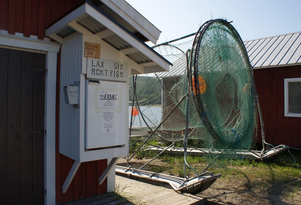 foto: Rebecka Ekvall,  © Kramfors kommun, Berghamn fiskförsäljning