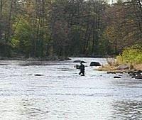Harmångers fiskevårdsområde,  © Harmångers fiskevårdsområde, Harmångers fiskevårdsområde