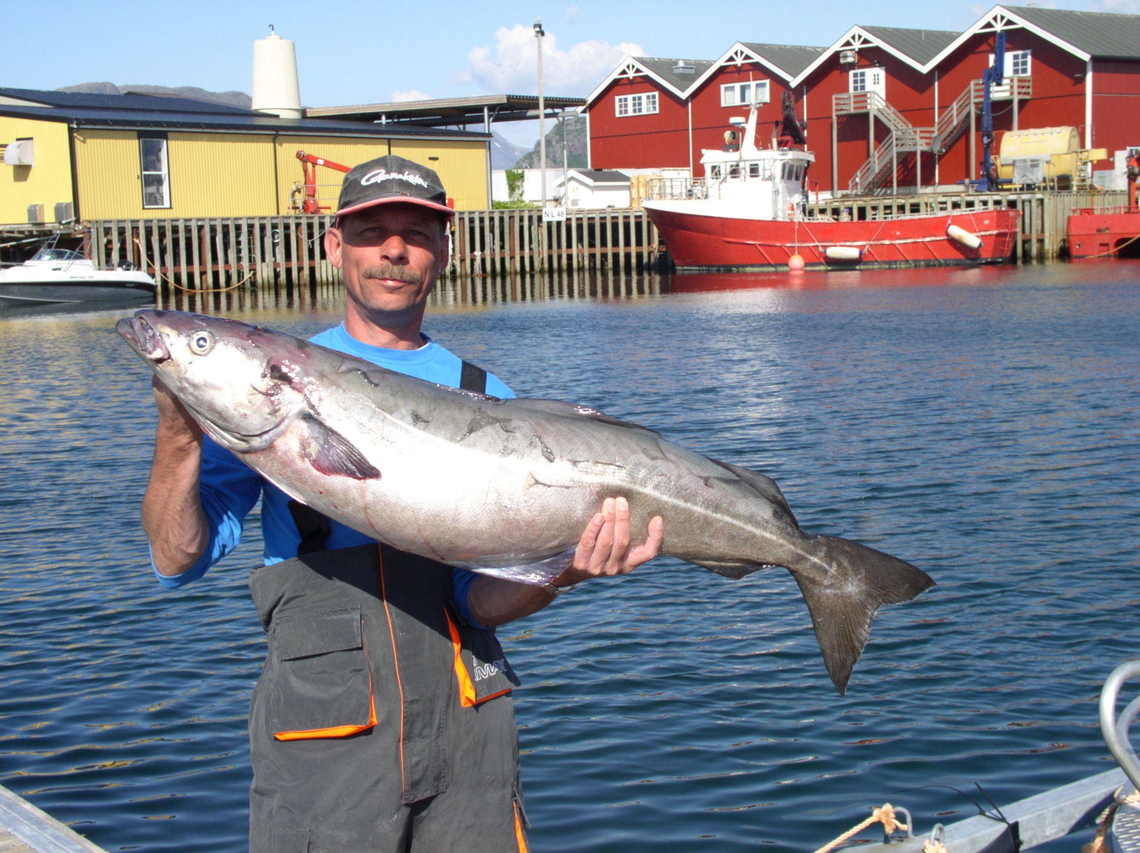 Kvarøy Sjøhus,  © Kvarøy Sjøhus, fiske