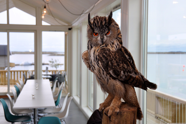 © Langneset AS, Restaurant Fabelaktig