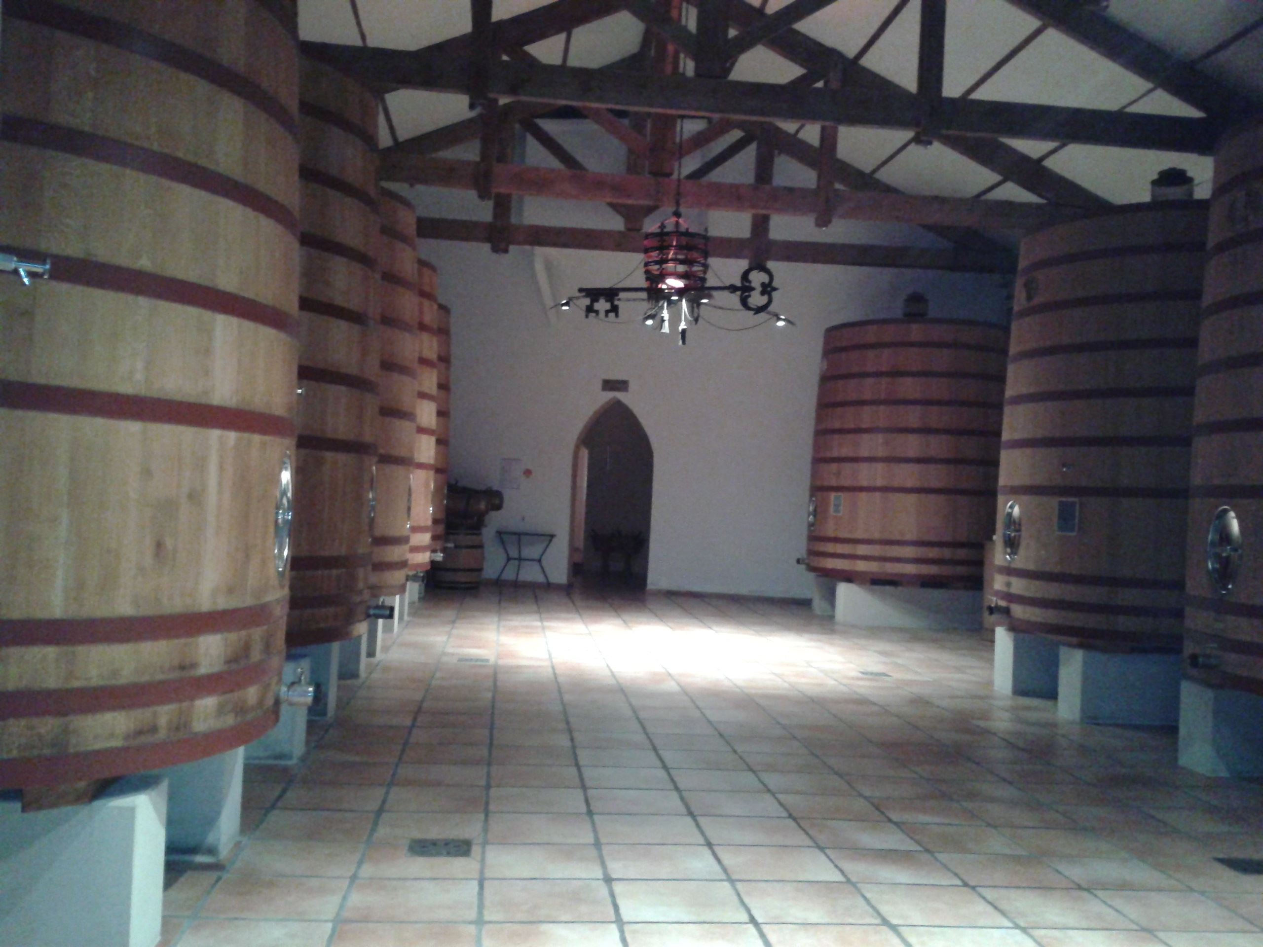 Escorted Wine-tour : Tavel and Châteauneuf du Pape