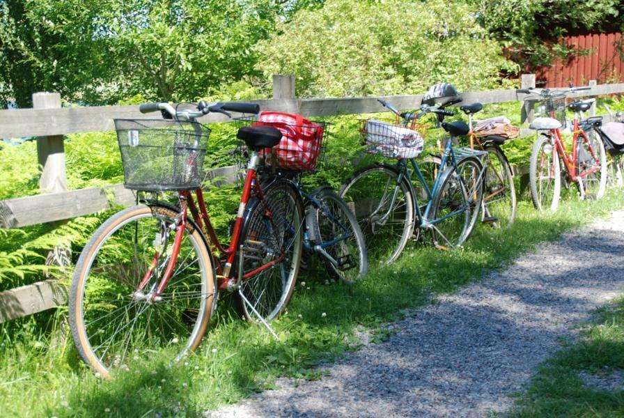 Cykla i Roslagen