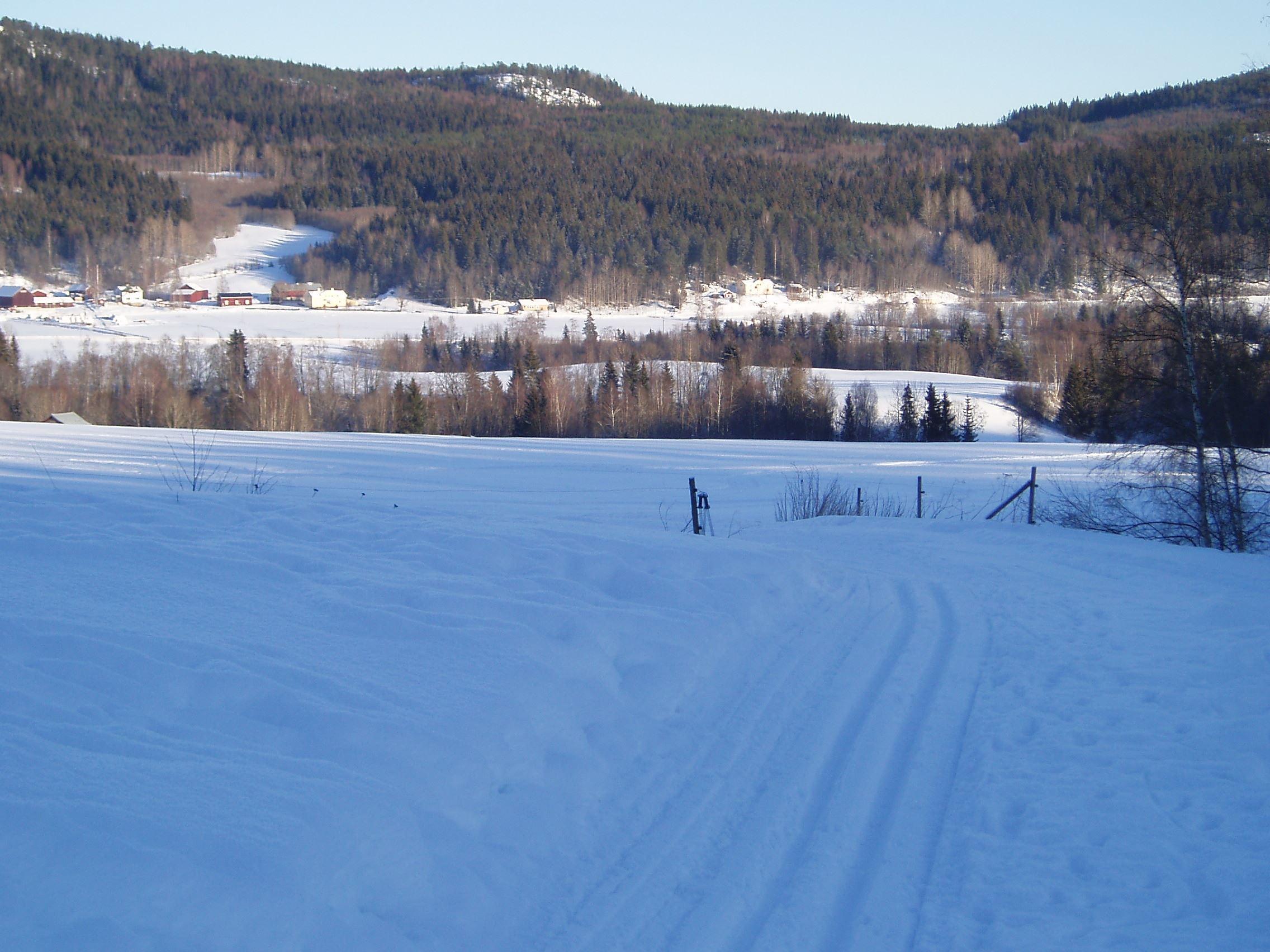 Skifahren für Anfänger