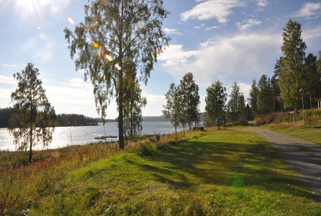 Måvikens camping & gästhamn