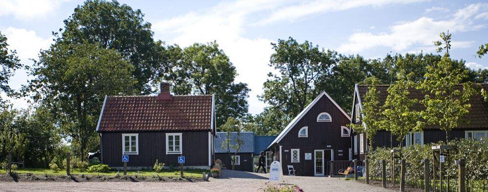 Charlotta Bjärholm, Birgit Nilsson Museum