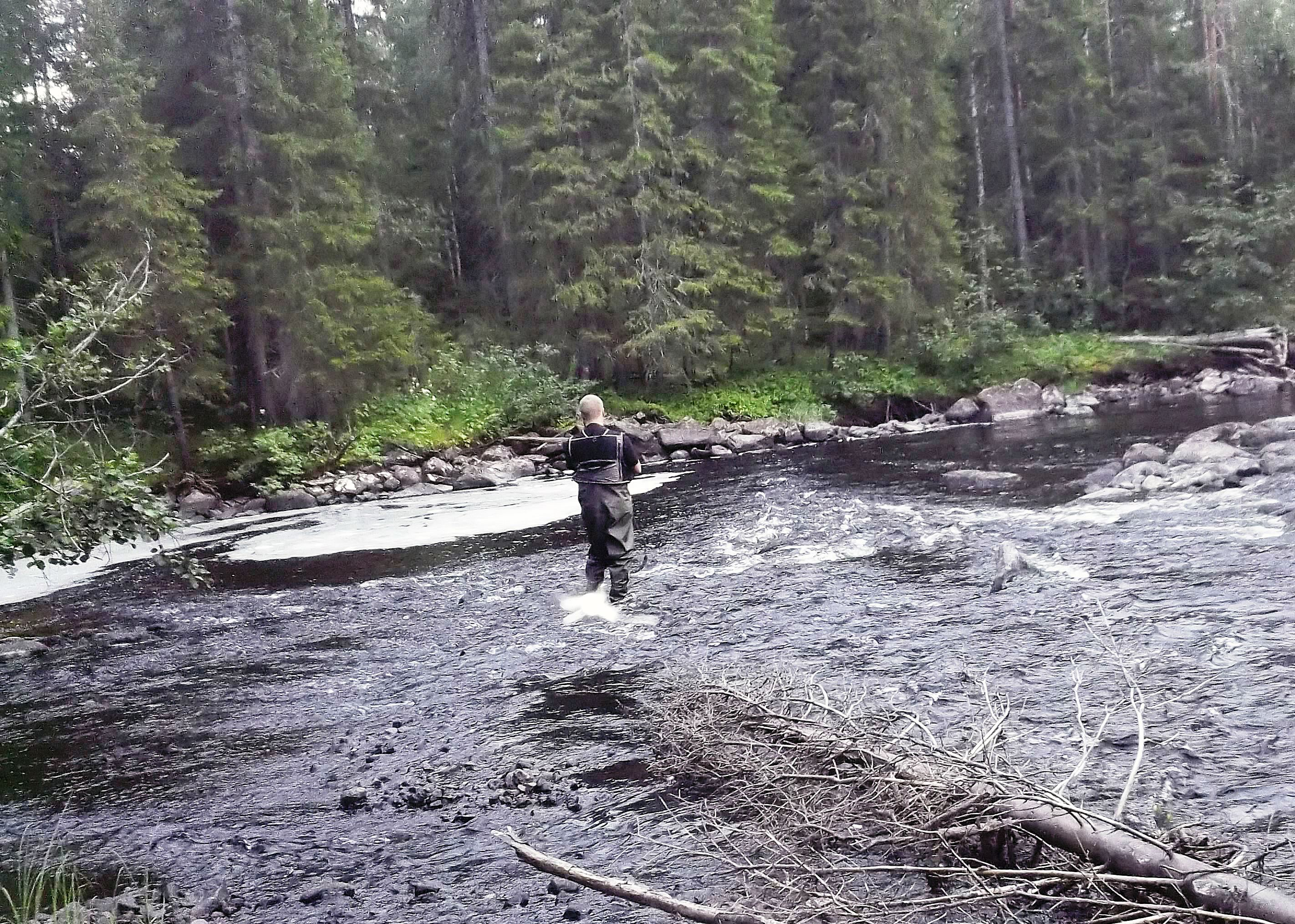 Umea fishing and nature