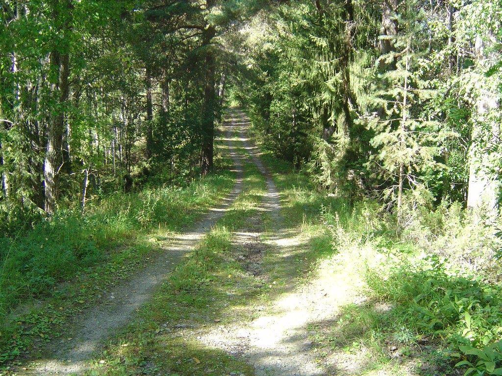 CEU,  © CEU, Ånäset - naturreservat