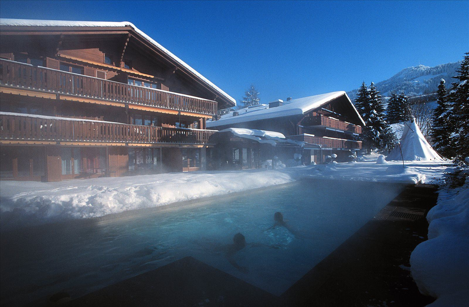 Hotel Alpine Lodge - Gstaad