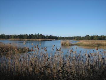Östersjöspåret