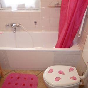 Lägenhet för 2-4 personer med 2 rum på Androsace Roseau Chamonix