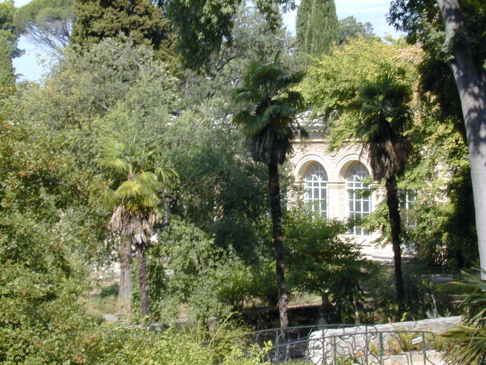 Illustrious botanists Montpellier