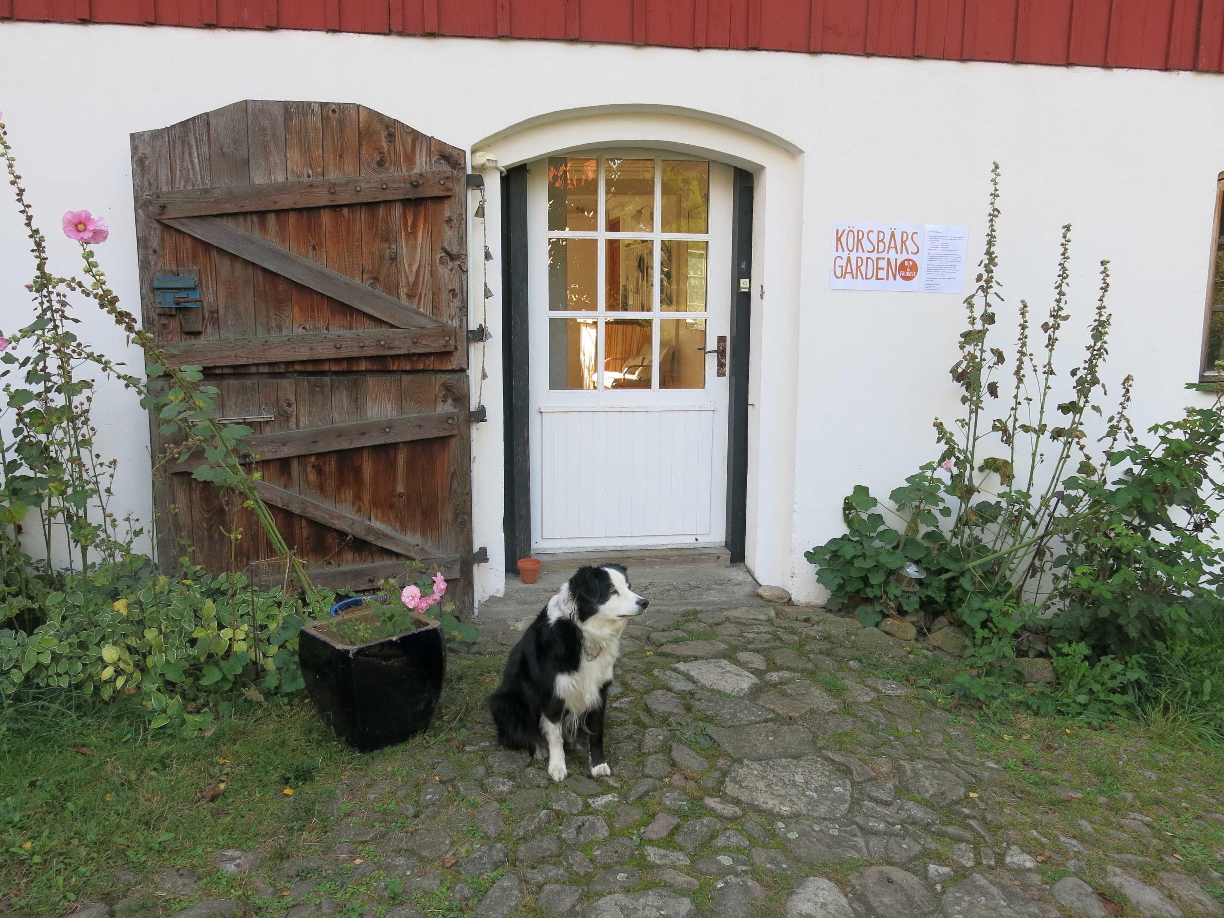 Körsbärsgården Rum & Frukost
