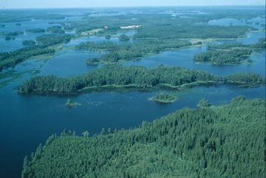Länsstyrelsen Kronoberg,  © Länsstyrelsen Kronoberg, Naturschutzgebiet Långö