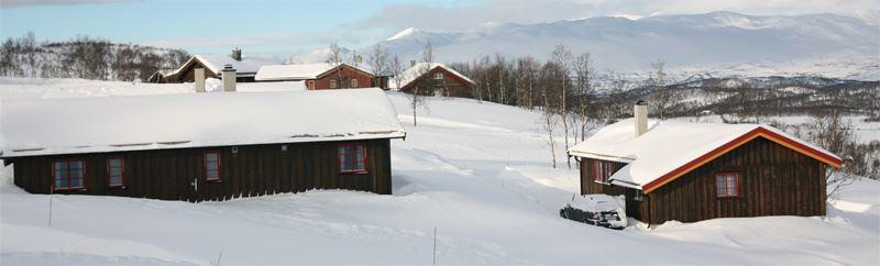 Vierli Cabin Park Rauland