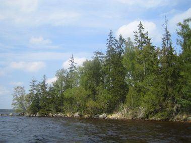 Länsstyrelsen: Sara Lamme,  © Länsstyrelsen Kronoberg, Nature reserve Ramsö