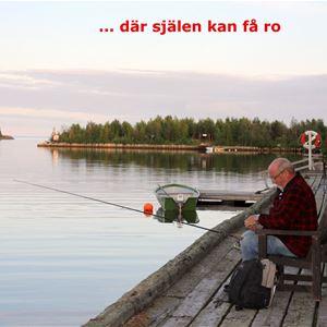 Staffan Stenlund,  © ja, Sikeå Havscamping