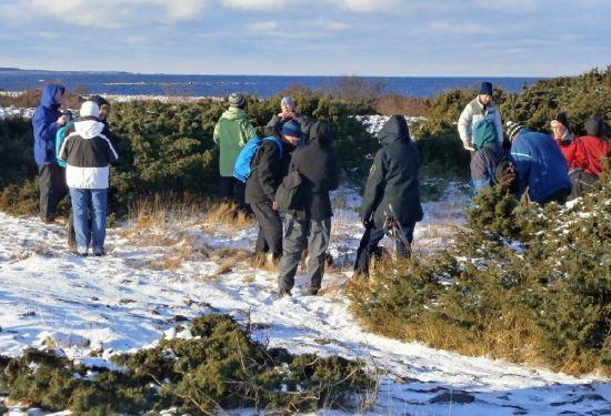 Adventsvandring i Sibirienskogen