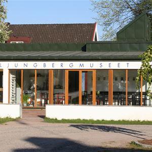 Pontus Ljungberg, Ljungberg Museum (copy)