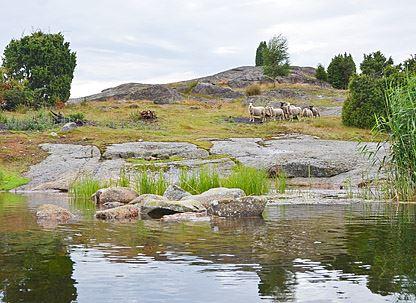 Robert Ekholm, Sonekulla-Biskopsmåla naturreservat