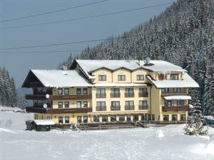 Hotel Holzer - Kitzbühel