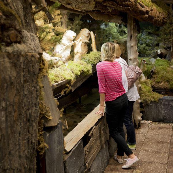 Akvariet naturrum