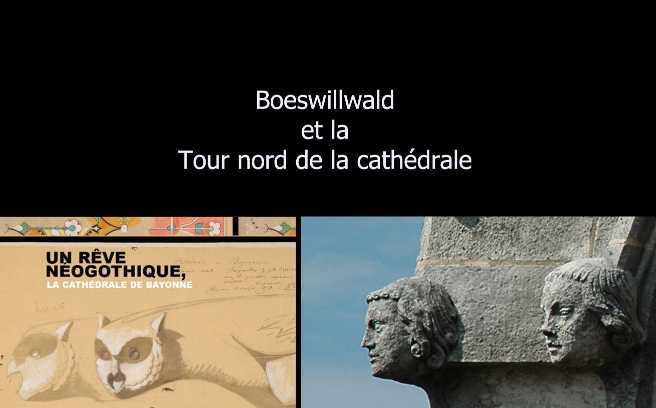 Boeswillwald et les tours de la cathédrale
