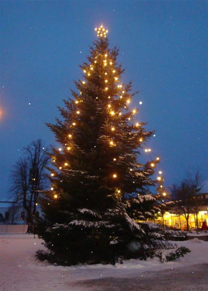 Christmas tree at the square