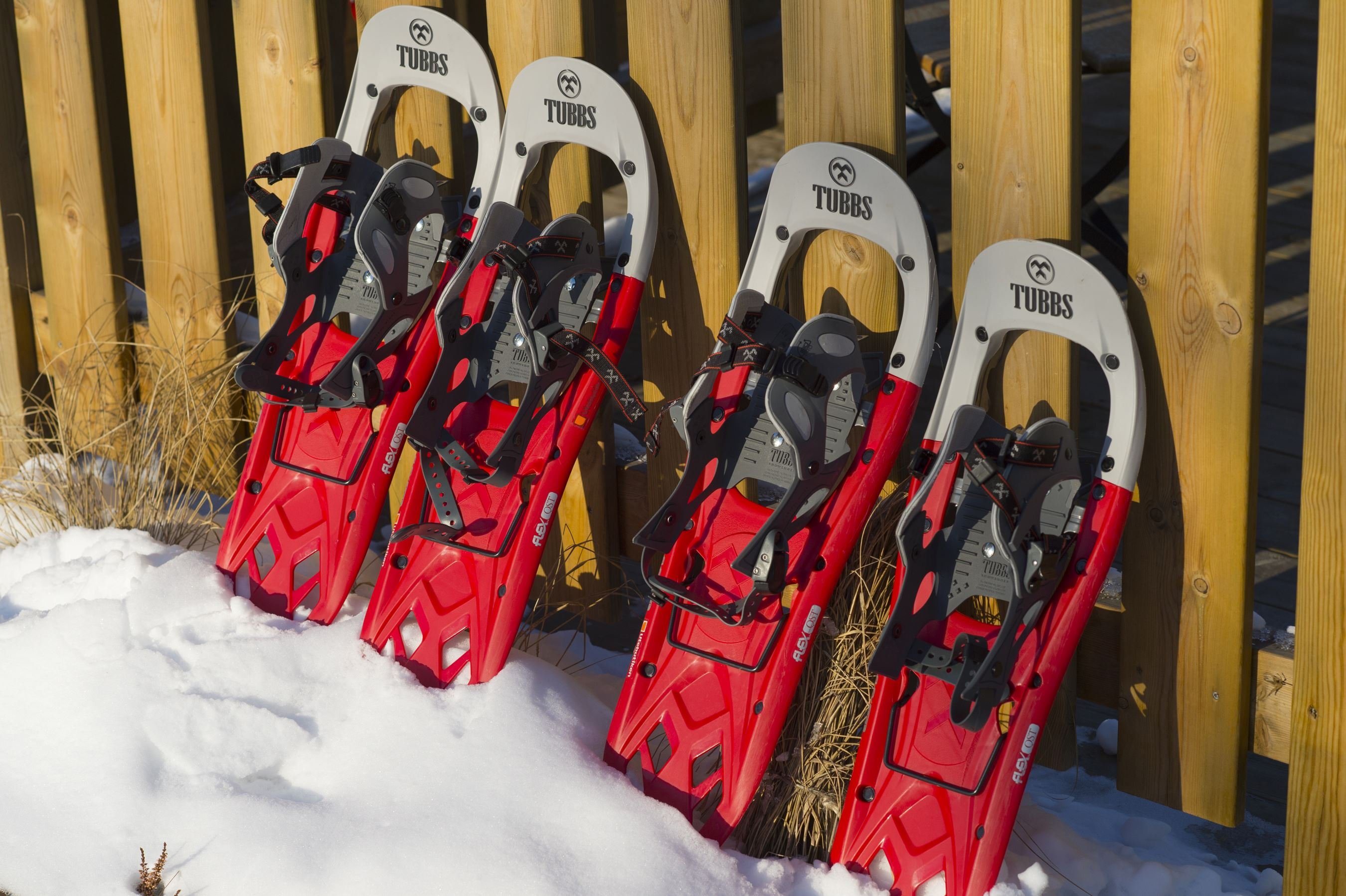 Lace up your snowshoes!