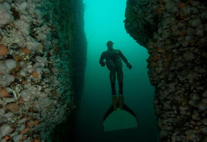 Vebjørn Karlsen, Dykking i Saltstraumen