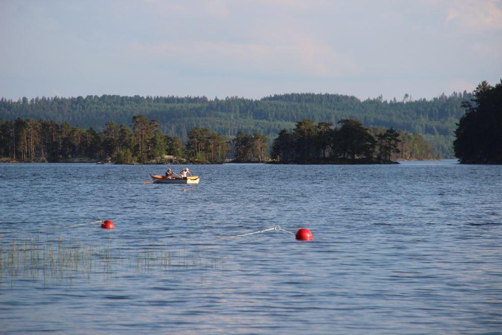 Fish in Långserums fishingarea, Vaggeryds municipality