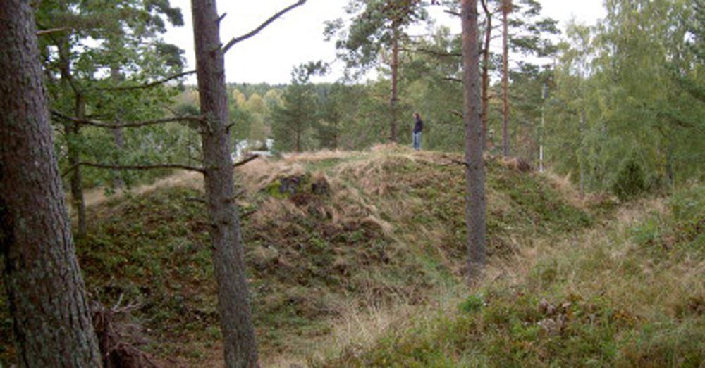 Bild Kulturparken Småland, Danaborg - borg