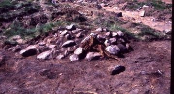 Bild Kulturparken Småland, Torset - övergiven (fossil) åker med röjningsrösen