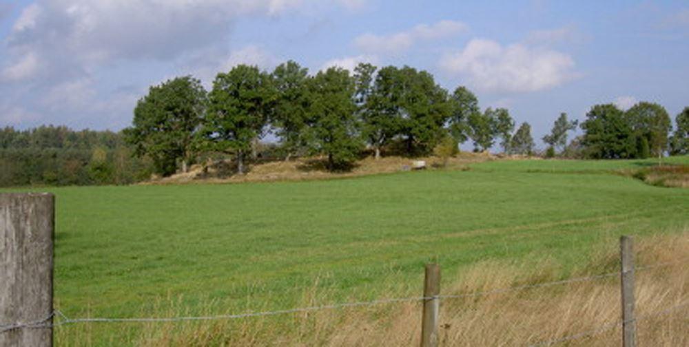 Bild Kulturparken Småland, Högarna - gravhögar