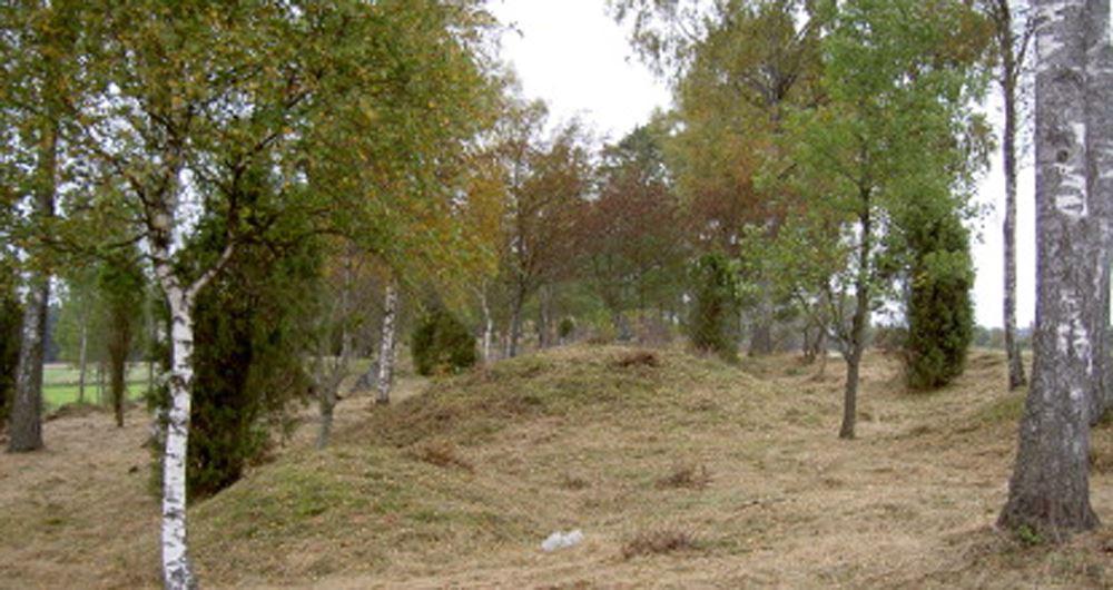 Bild Länsstyrelsen Kronoberg,  © Länsstyrelsen Kronoberg, Össlöv - Skeppsättning och gravfält