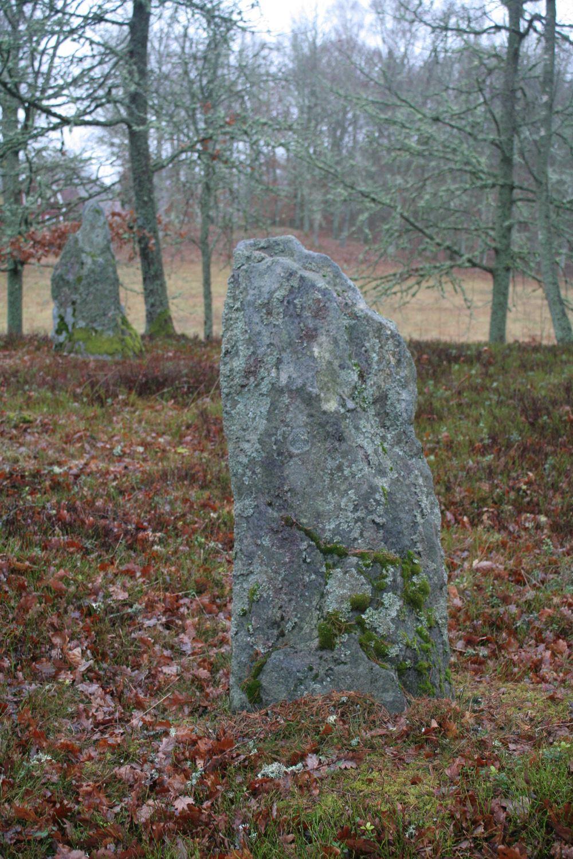 © Ljungby kommun, Spökebacken - ett gravfält och en segen
